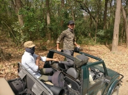 Jim Corbett Tour Packages Enjoy Holiday at low Price
