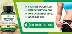 Best Price Of Green Coffee Bean Weight Loss Supplement