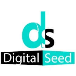 Digital Marketing Company | SEO Agency in Pune | Digitalseed India