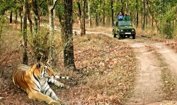Book Splendid Jim Corbett Tour Package