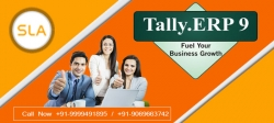 SLA Consultants Noida: Best Tally ERP 9 Training Course Institute in Noida