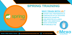 Best Spring Training Institute in Electronic City - eMexo Technologies