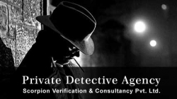 Private Detective Agency For Personal, Corporate